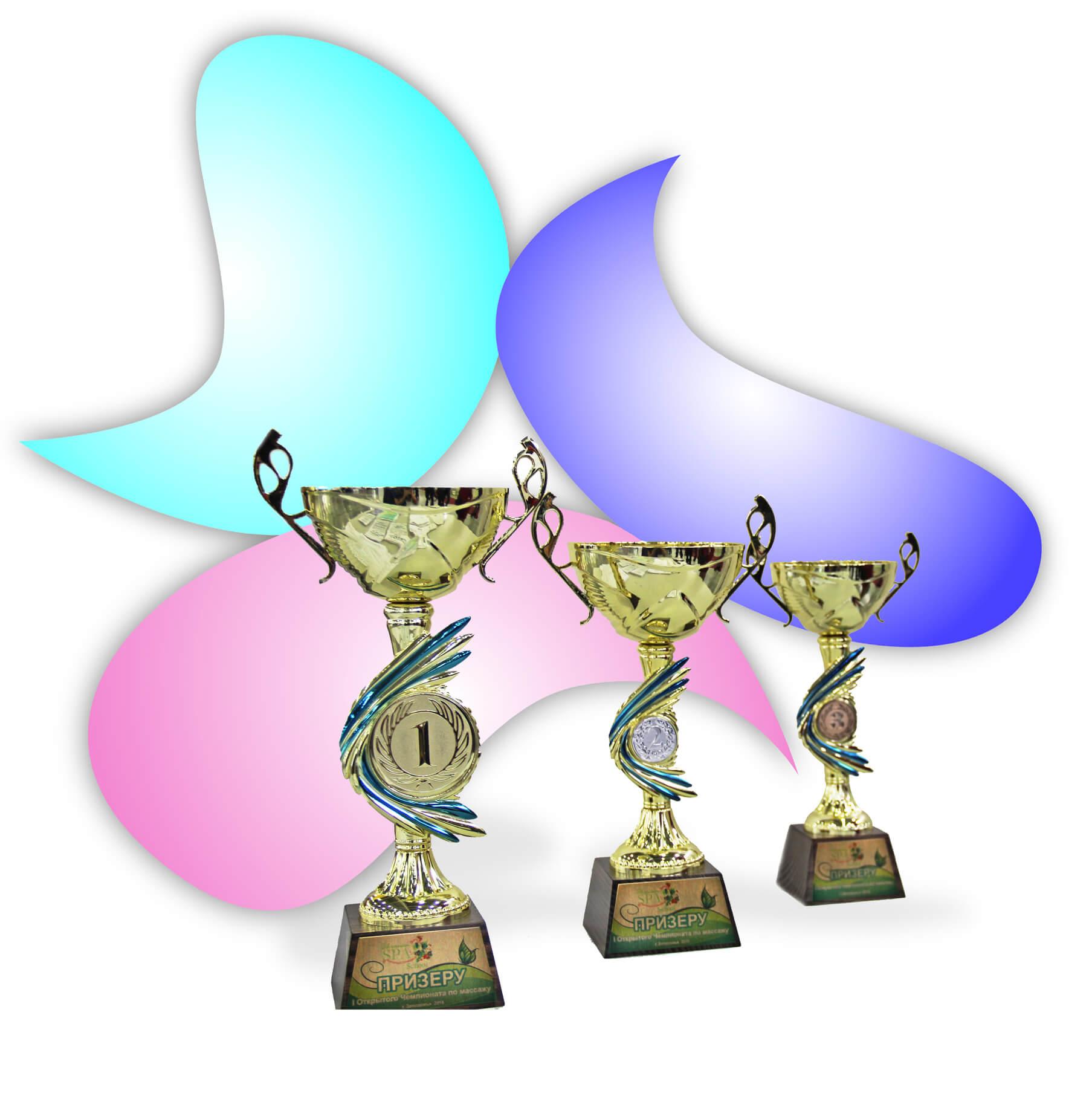 Проводится по правилам и критериям Единой консолидированной системы чемпионатов по массажу, www.spaevent.ru